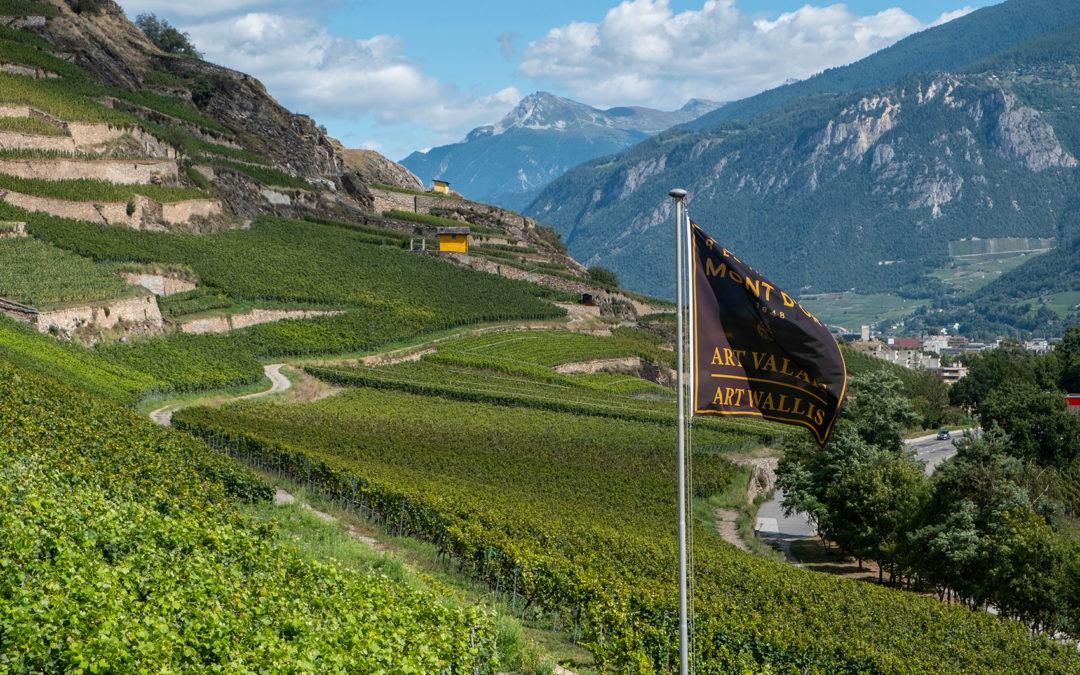 Ouverture de la Résidence Mont d'Or Art Valais | Art Wallis